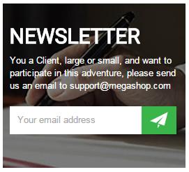 frontend-newsletter-l3
